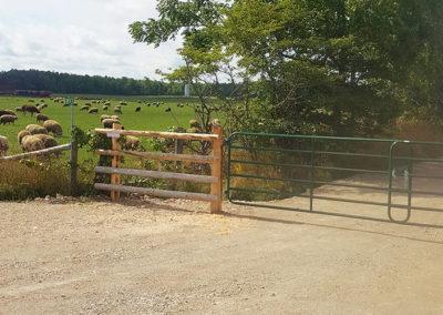 Stylish farm fencing