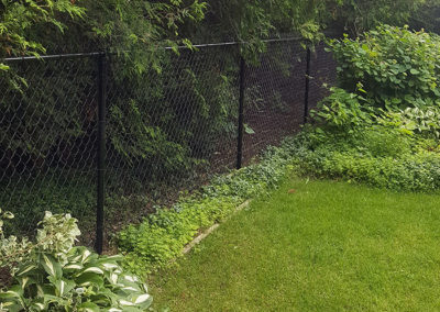 Chainlink fence in backyard